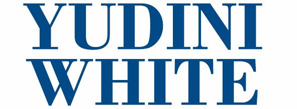 Yudini White Paper